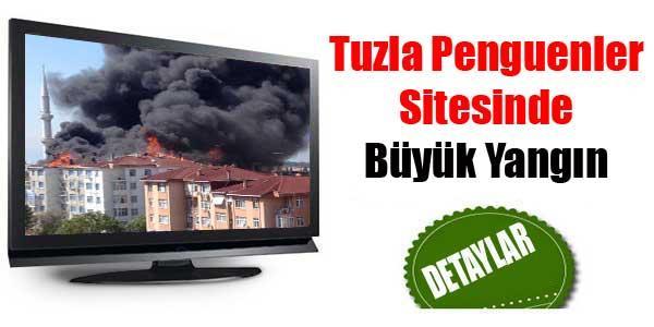 Tuzla Penguen Sitesinde Yangın