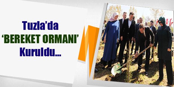 Tuzla'da 'Bereket Ormanı' Kuruldu...