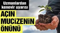 Başkan Erdoğan'ın söylediğini bürokrasi anlamadı. Uzmanlardan kenevir uyarısı: Açın mucizenin önünü.